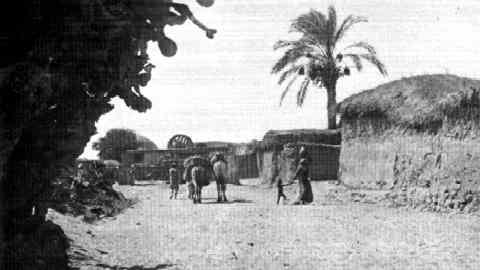 Arab Settlement Near Tel-Aviv, 1911